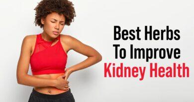 Best Herbs To Improve Kidney Health