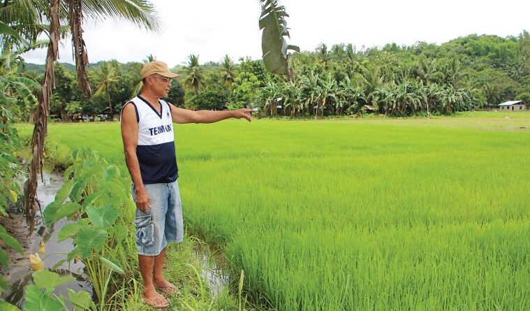 Foreign traders accumulate increasingly more farmland across the world