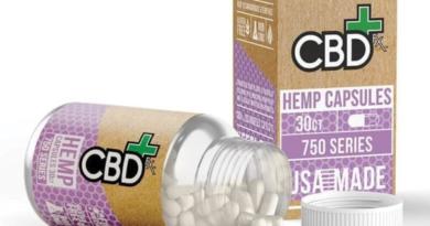 6 FACTORS THAT IMPACT THE PRICE OF CBD HEMP CAPSULES