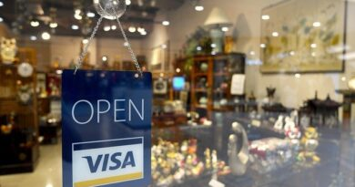 What to expect from a business immigration visa planning consultant